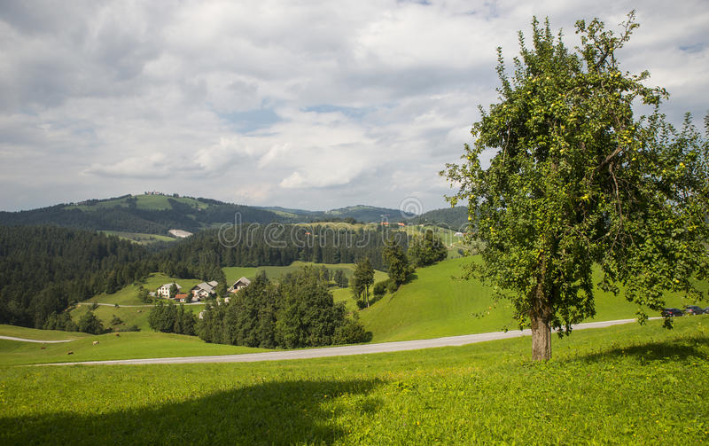 Villaggio di Rovte, Slovenia immagine stock