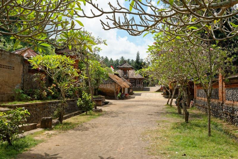 Villaggio di Tenganan in Bali immagine stock