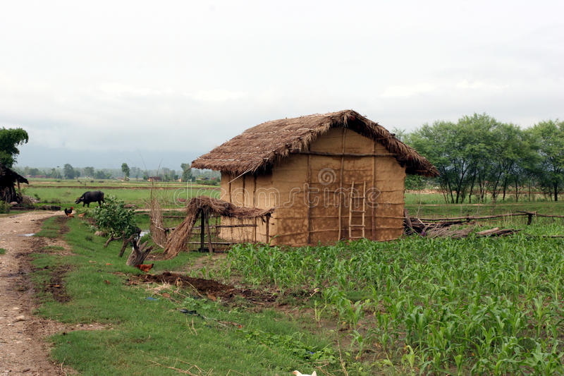 Villaggio di Terai nel Nepal fotografia stock