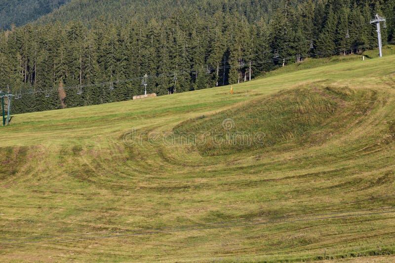 Villaggio Donovaly slovakia Tatras Paesaggio di ESTATE fotografia stock libera da diritti