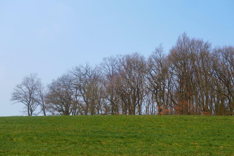 Villaggio in Germania, molto piacevole fotografia stock libera da diritti