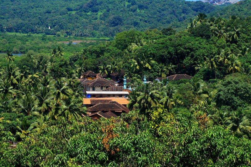 Villaggio indiano in giungla fotografie stock libere da diritti