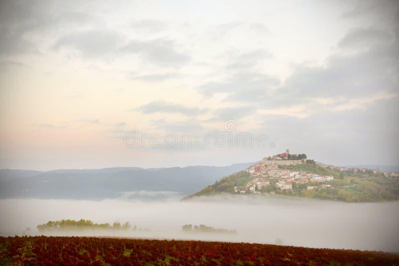 Villaggio medievale di Motovun su una collina sopra le vigne in Istria, Croazia immagini stock libere da diritti