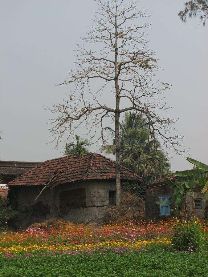 Villaggio nel Bengala Occidentale fotografia stock