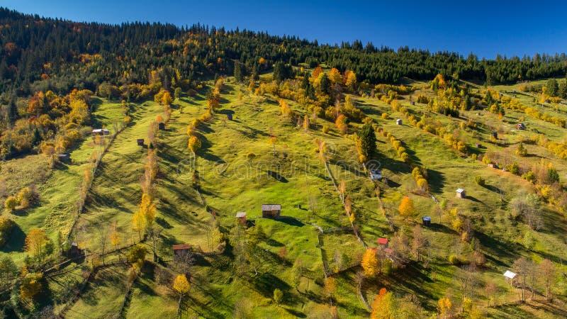 Villaggio rumeno sulla campagna con la vecchia casa di legno ed animali all'azienda agricola fotografia stock