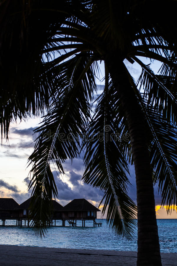 Download Villas at sunset, Maldives stock image. Image of silhouetted - 75986035
