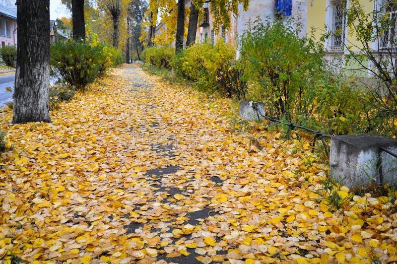 ville Angarsk été 2011 - 71 photo libre de droits