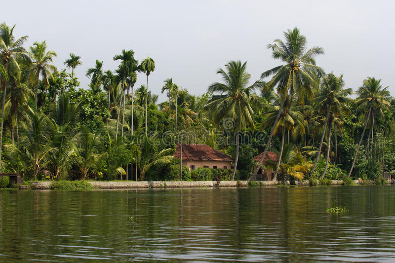 Ville d'Allepey sur l'eau Mare, plantation de riz, manguier de cocotier Paysage de rivière photo stock