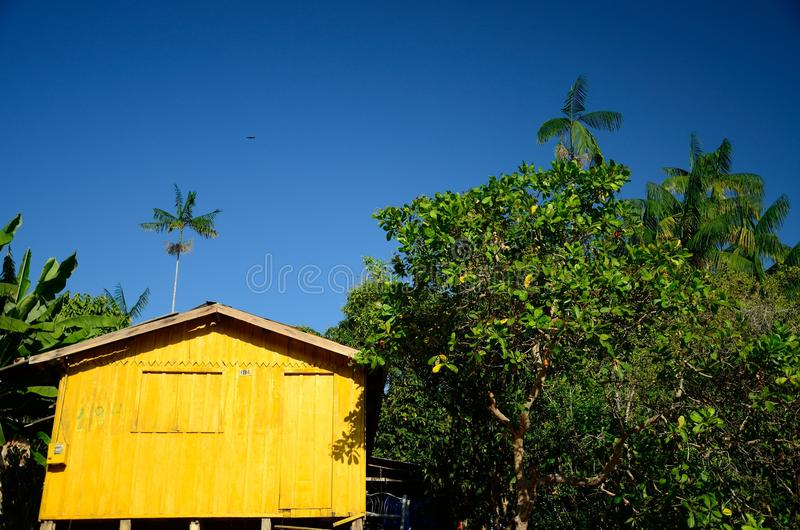 Ville d'Amazone photographie stock libre de droits