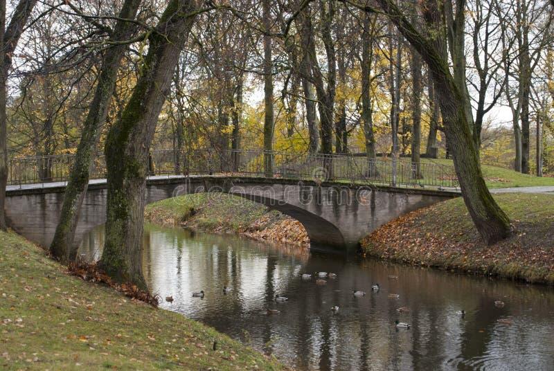 Ville de Jelgava, parc de palais, pont et canards sur la rivière image stock