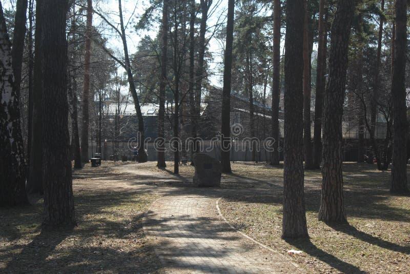 Ville de Korolev Valentinovka Parc de Chvetaeva photographie stock libre de droits