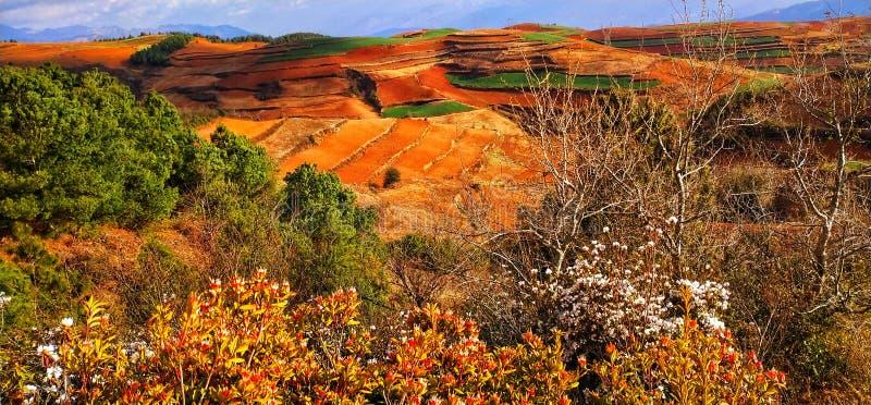 Ville de Kunming dans la province de Yunnan ? images libres de droits