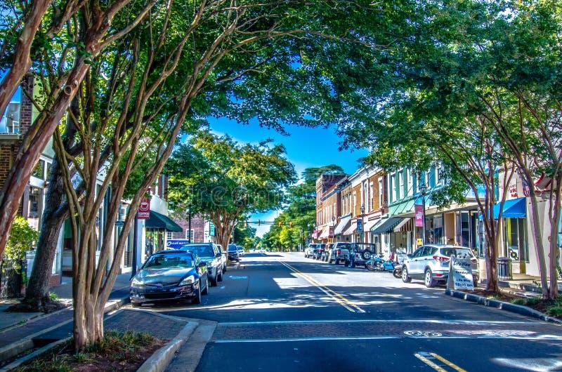 Ville historique de rose de blanc de York la Caroline du Sud photo libre de droits