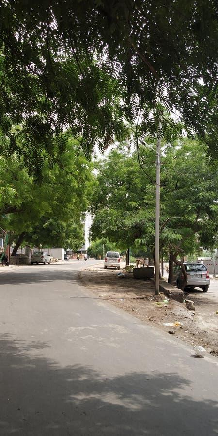 Ville verte de l'Inde de route image stock