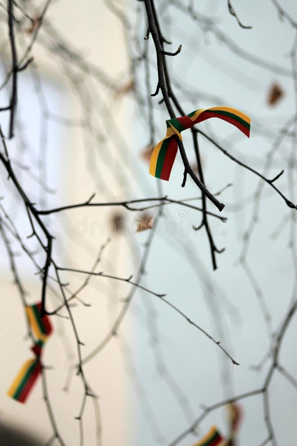 Vilnius i detaljer, Litauen royaltyfria bilder
