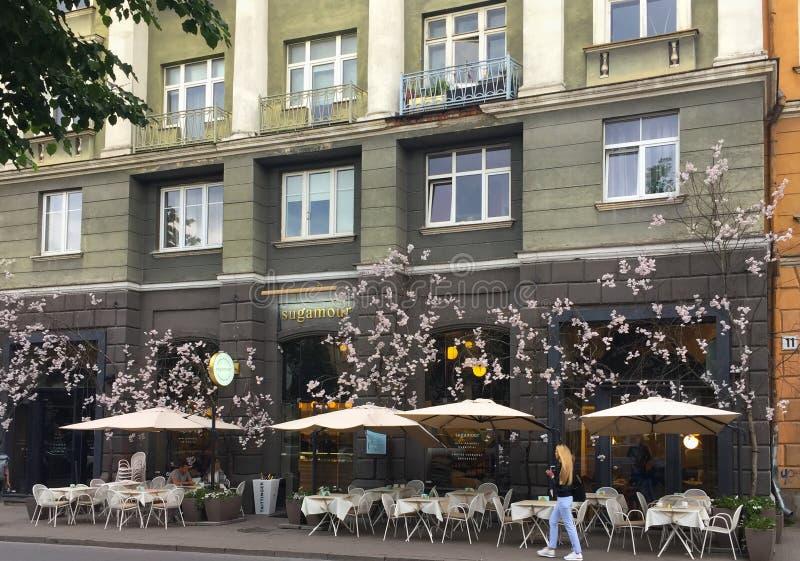 Vilnius, Litauen Fassade der Nachtischboutique u. des Restaurants Sugamour stockbilder