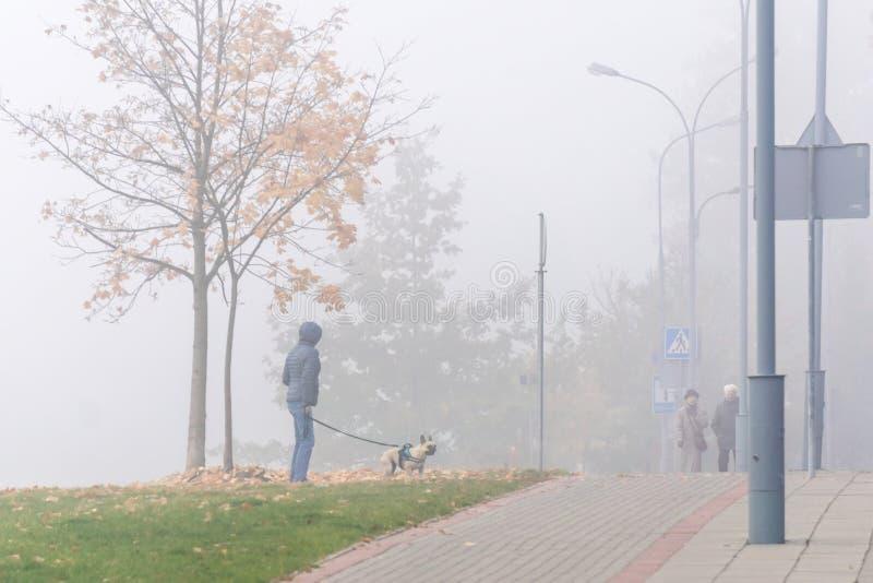 VILNIUS, LITAUEN - 21. OKTOBER 2018: Leute und Hund zwischen Park und Straße im nebeligen Morgenprogramm lizenzfreie stockfotografie