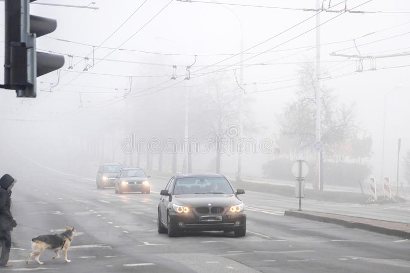 VILNIUS, LITHUANIA - 21 OCTOBER, 2018: Dog walker passing the foggy city street during morning road traffic. royalty free stock photography
