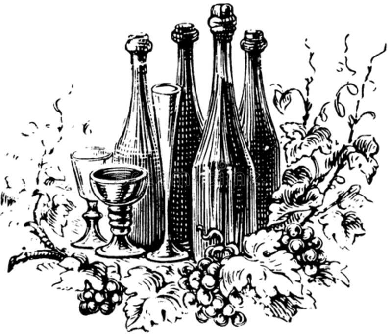 vin-002 royaltyfri bild