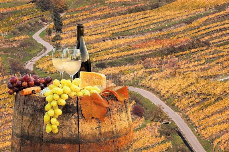 Vin blanc avec le baril sur le vignoble dans Wachau, Spitz, Autriche photo libre de droits