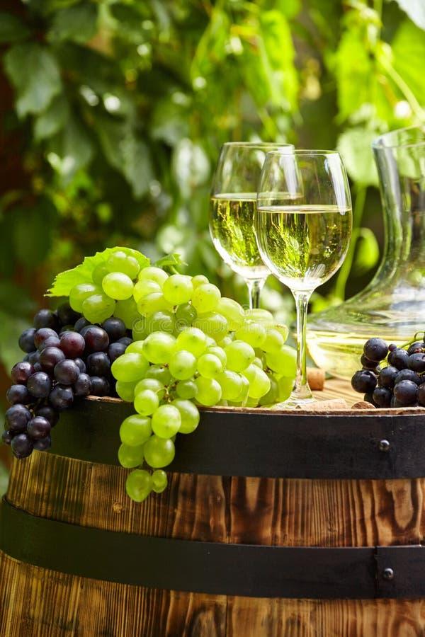 Vin blanc avec le verre à vin et les raisins sur la terrasse de jardin image libre de droits