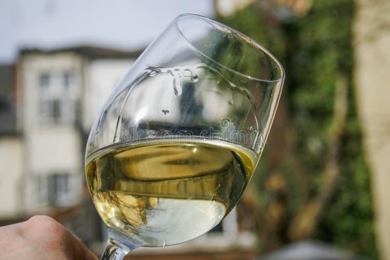 Vin blanc tourbillonnant dans un verre image stock