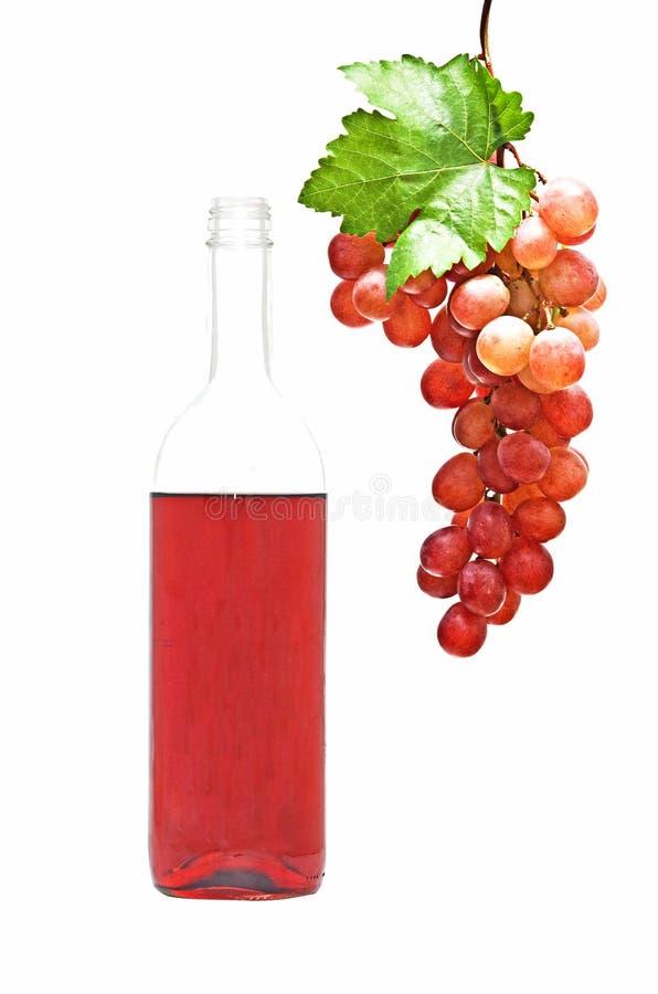 vin de vigne de bouteille image libre de droits