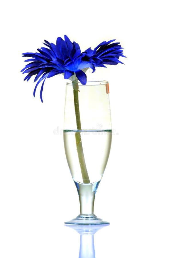 Vin et fleur images libres de droits