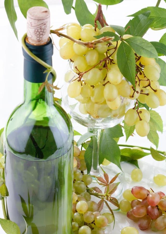 Vin et jeune raisin photos libres de droits