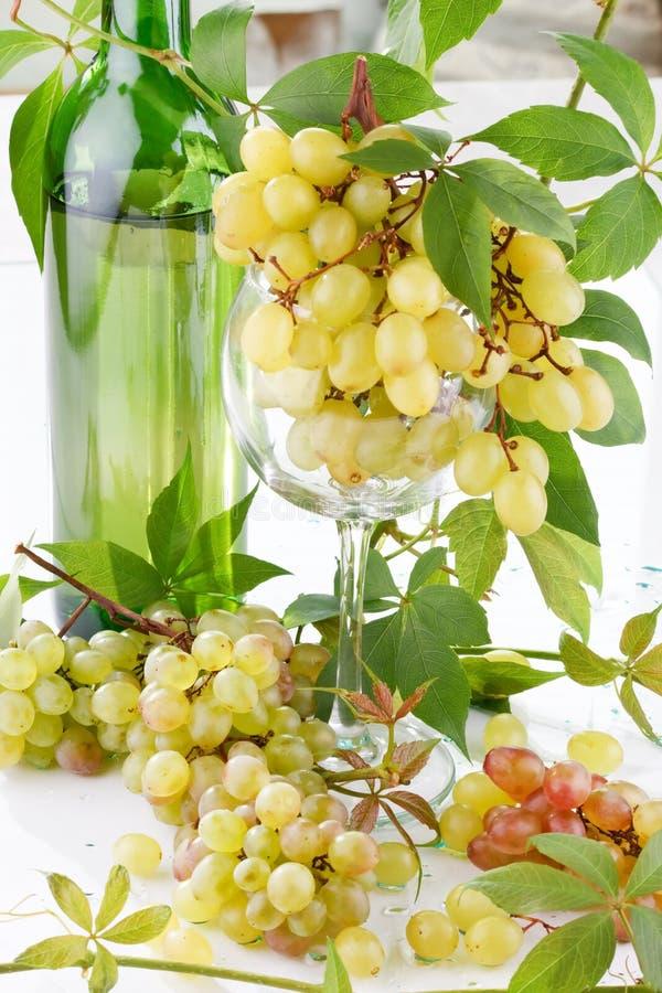 Vin et jeune raisin images libres de droits