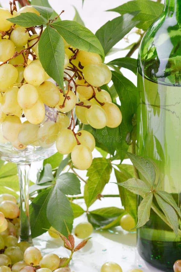 Vin et jeune raisin photos stock