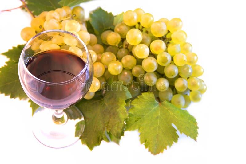 Vin et raisin photo stock
