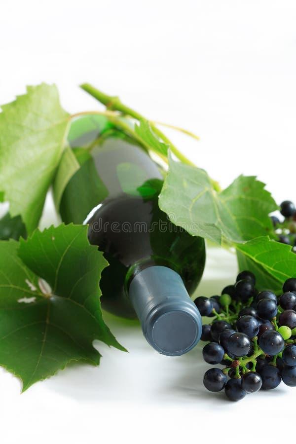 Vin et raisins image stock