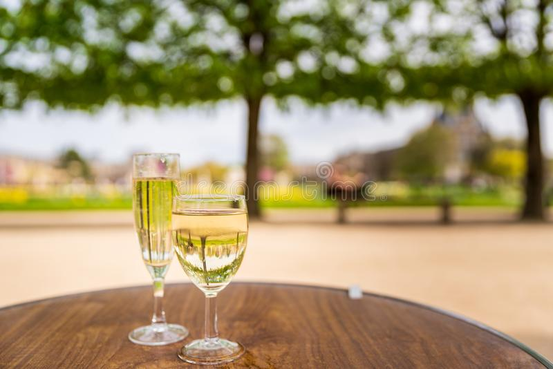 Vin i den Tuileries trädgården royaltyfria foton