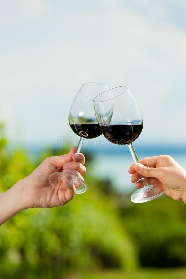 Vin potable de couples heureux au lac en été images stock