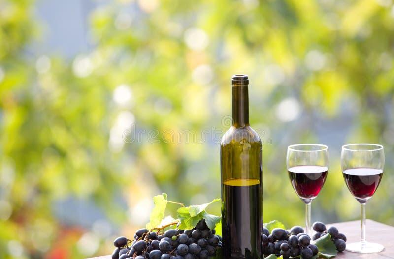 Download Vin rouge photo stock. Image du collecte, accroissement - 87702634
