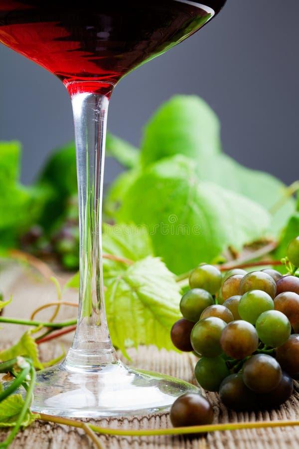 Vin rouge avec des raisins photo libre de droits