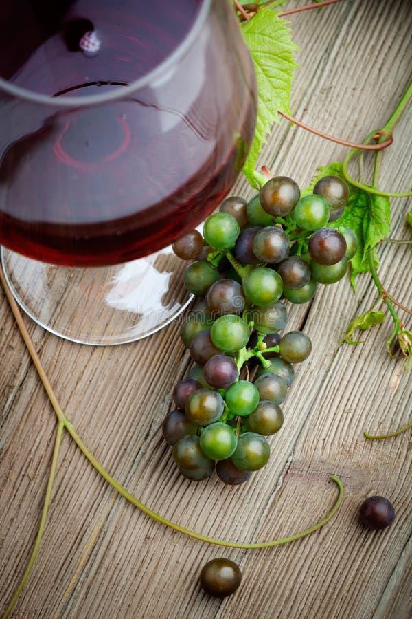 Vin rouge avec des raisins photos libres de droits