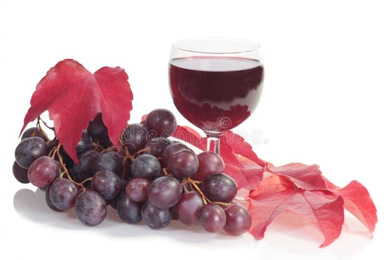 Vin rouge avec des raisins photographie stock libre de droits
