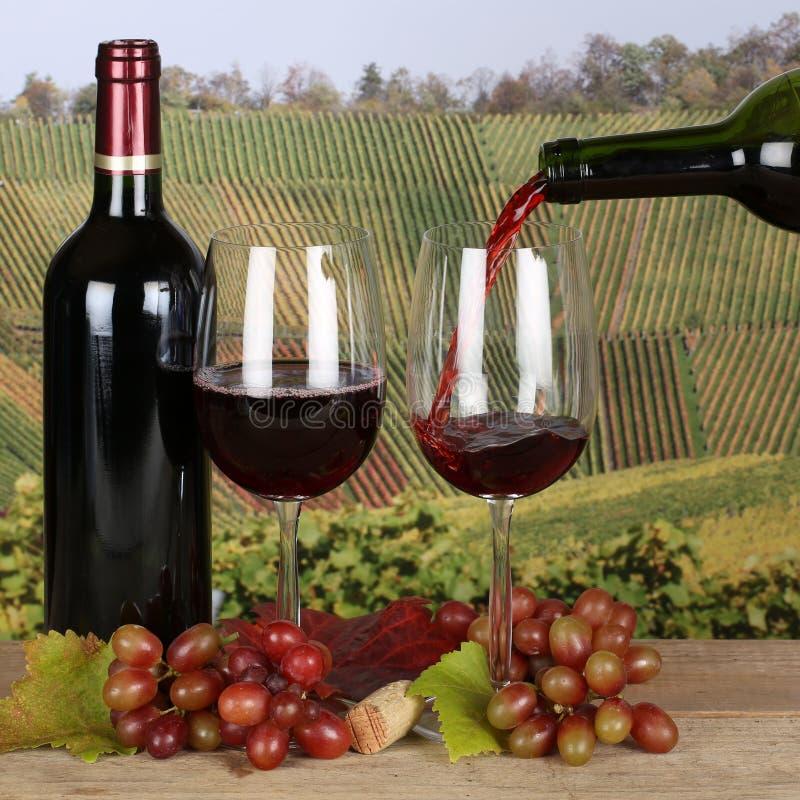 Vin rouge versant d'une bouteille dans les vignobles photographie stock libre de droits