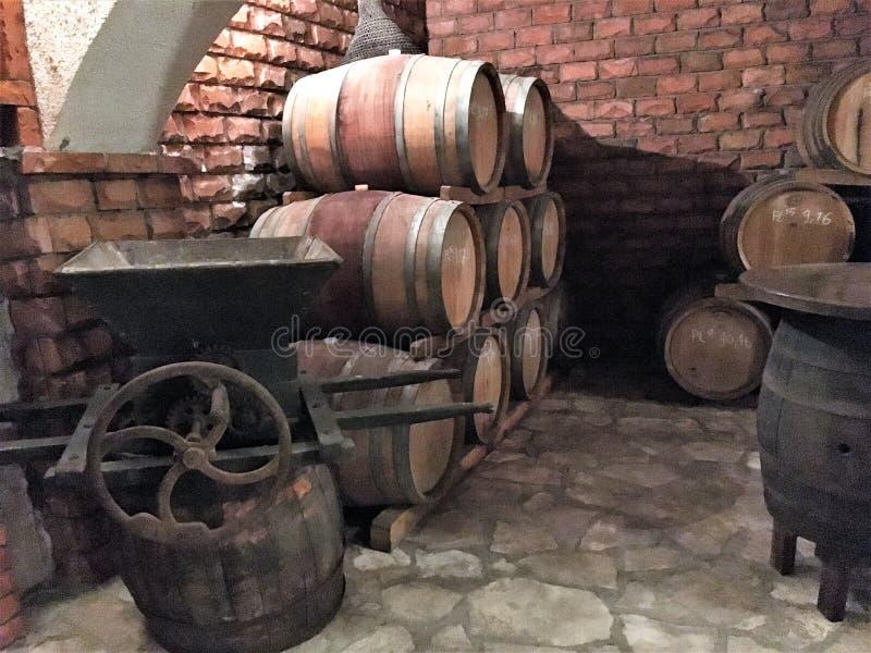 Vin som åldras i trummor i en källare arkivbild