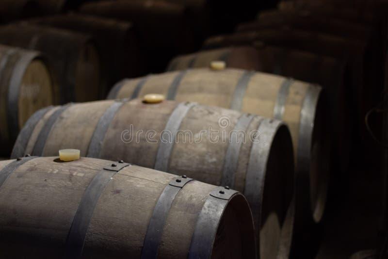 Vin som mognar i trummor i en vinodling arkivfoton