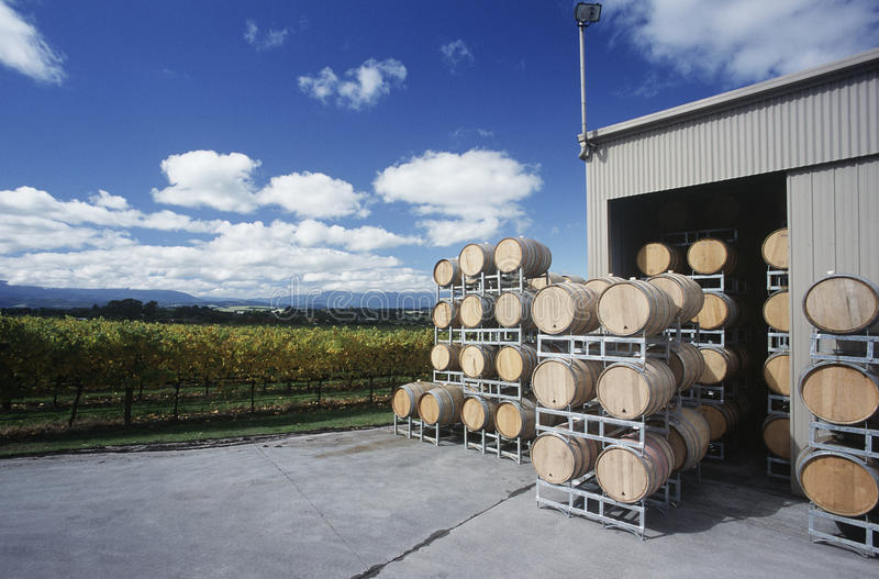 Vin stocké dans les barils à la vallée Victoria Australia de Yarra de wineyard. images libres de droits