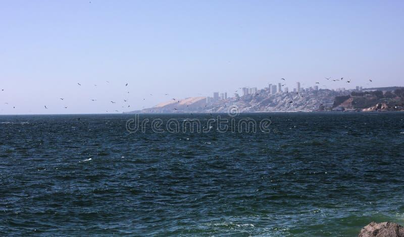 Vina del Mar - il Cile - I - fotografia stock libera da diritti