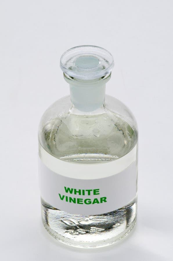 Vinagre blanco foto de archivo libre de regalías