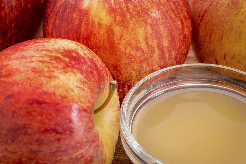 Vinaigre de cidre non filtré et cru de pomme photo libre de droits