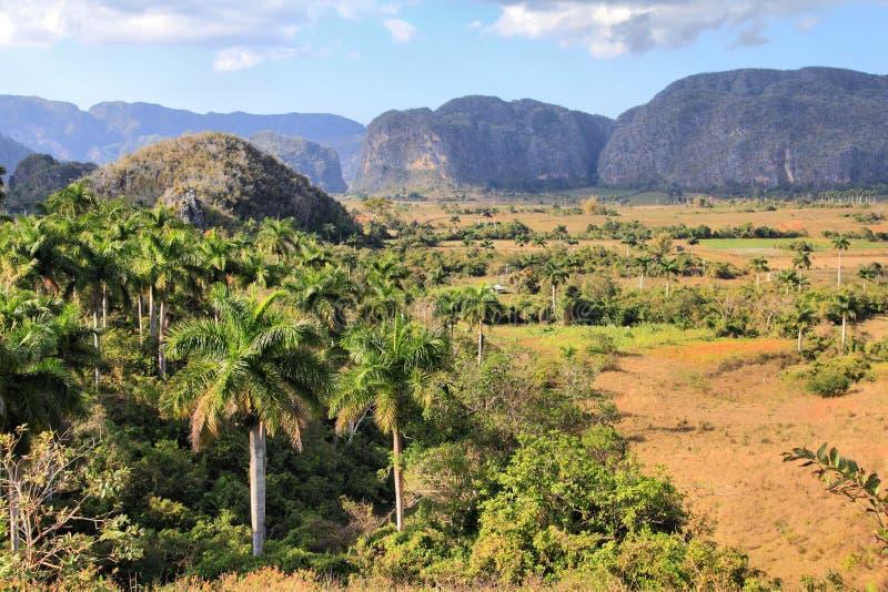 Vinales, Cuba imagens de stock royalty free