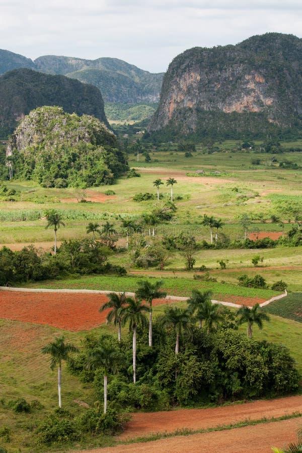vinales de valle стоковое изображение