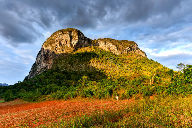 Vinales Valley Panorama - Cuba stock photography