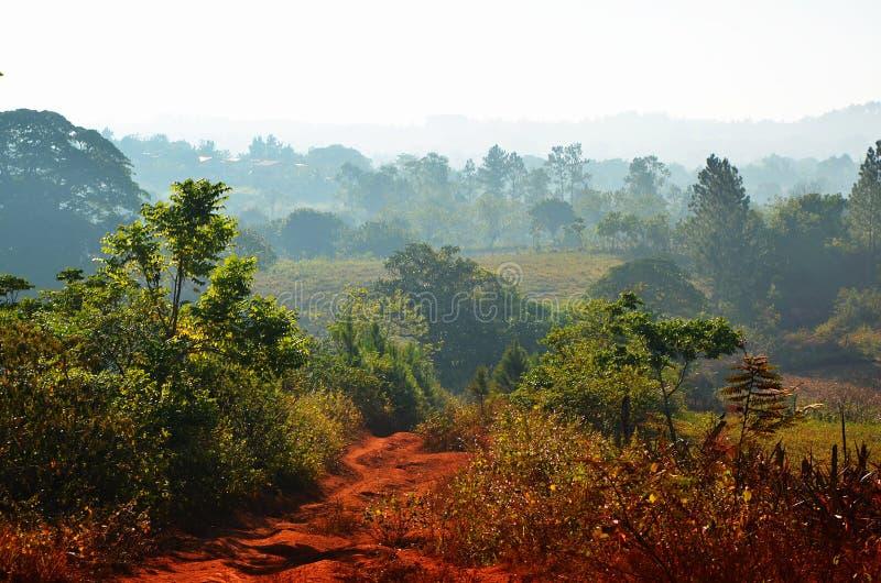Vinalesvallei in de ochtend, Cuba royalty-vrije stock afbeeldingen